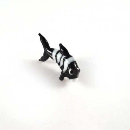 pruhovaná rybka